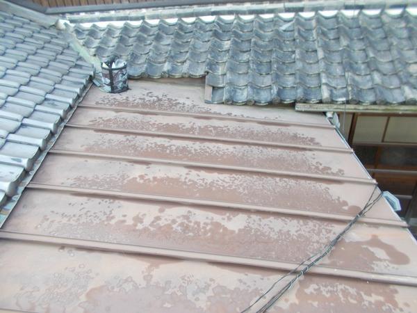 たつの市T様 屋根塗装のサムネイル