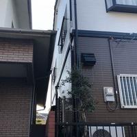 松山市N様 外壁塗装のサムネイル