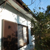 茅ヶ崎市S様 外壁塗装、屋根塗装のサムネイル